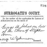 gwjohnson1864surrogate